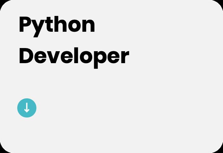 python-developer