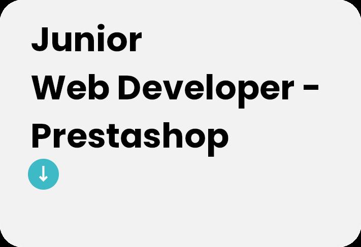 junior web deweloper